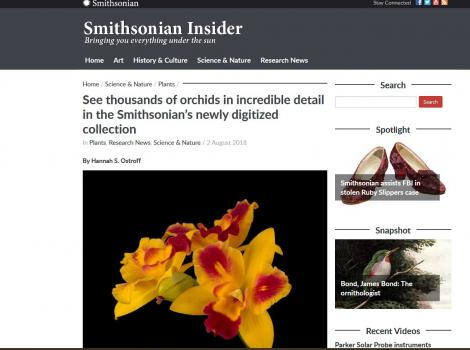 Smithsonian Insider Acrticle on Orchids Mass Digitization